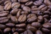 Fünf Fragen, fünf Antworten: Heute zum Thema Kaffee