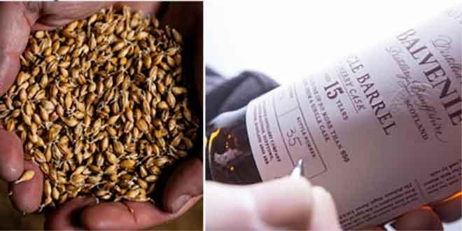 10 Fakten über Whisky, die Sie wissen müssen