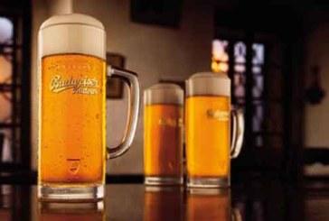 Introdrink wird neuer Inhaber der Marke Budweiser in der Schweiz