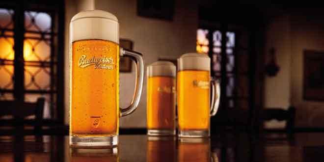 Introdrink ist neuer Inhaber der Marke Budweiser in der Schweiz