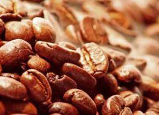 Kaffee-Röstung: Von 0 auf 1000 Aromestoffe