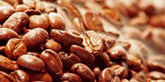 Kaffee-Röstung: Von 0 auf 1.000 Aromastoffe