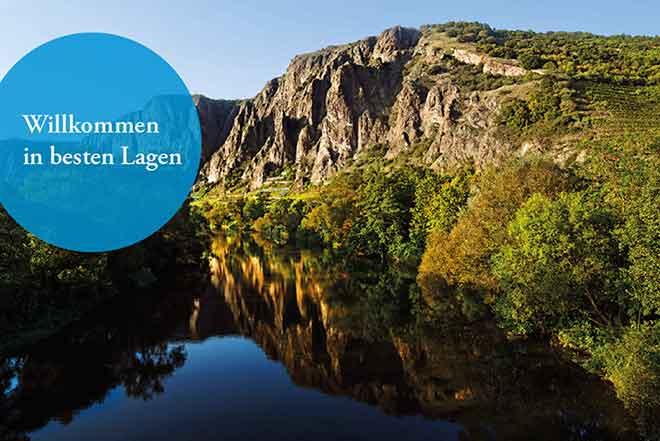 Deutsches Weininstitut mit neuer, bildstarker Webseite