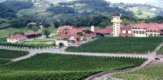 MIOLO – Brasiliens exklusive Weinwelt auf der ProWein 2015