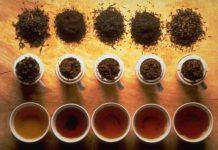 Identität von Tee – Was uns die moderne Technik über die Produkte verrät