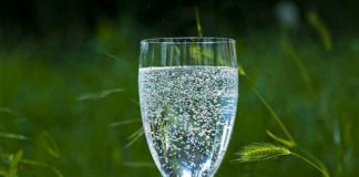 Gesund und fit durch den Tag: Richtiges Trinken für mehr Wohlbefinden