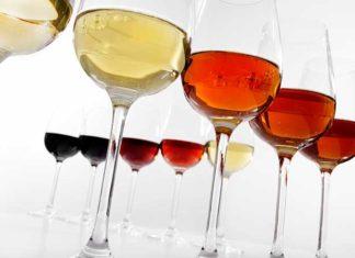 Taste, Discover, Love: Sherry startet mit deutscher Website