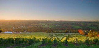 50 Grad Nord: Das Weinland Kanada auf der ProWein 2016