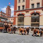 Feldschlösschen-Attraktionen an der Berner Frühlingsmesse BEA