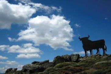 Markenzeichen und Kultobjekt: 60 Jahre Osborne-Stier