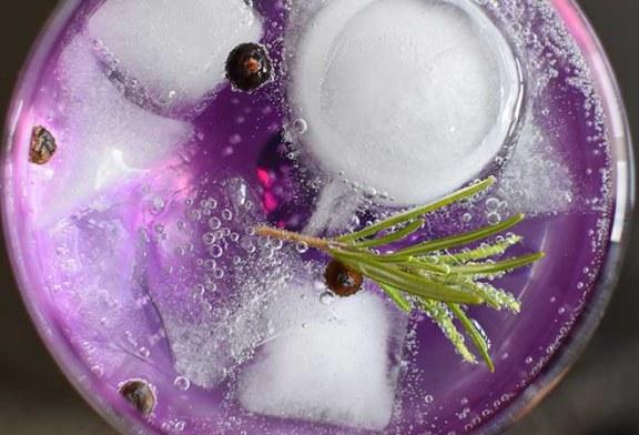 Gin und was man über ihn wissen muss