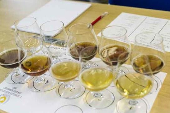 Swiss Beer Award: 1. Nationale Bierprämierung ist lanciert
