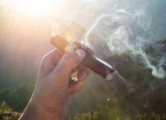 Mit Zigarren den Sommer geniessen