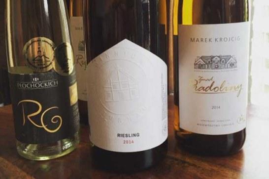 Der Weinbau erobert den Norden