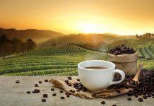 Kaffee: Andere Länder - andere Zubereitungsarten
