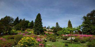 5-Sterne-Picknick im Park San Grato in Lugano